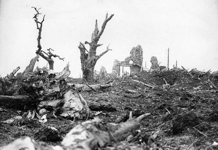 The Battle of Arras 1917