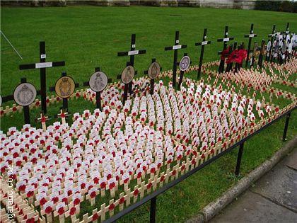 Westminster Abbey Field of Remembrance QARANC Plot